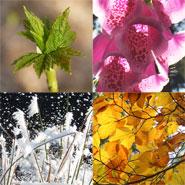 stiltewandelingen in het ritme van de seizoenen